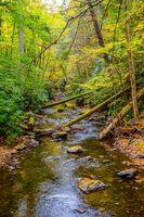 Фото бесплатно осень, река, лес, деревья, камни, природа, пейзаж
