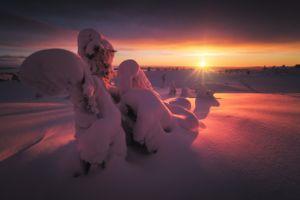 Зимняя красота Русского Севера · бесплатное фото