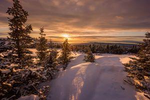 Фото бесплатно закат, зима, Аляска, снег, деревья, пейзаж