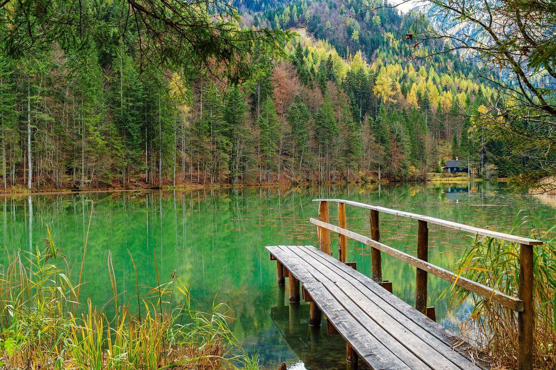 Фото бесплатно Зальцкаммергут, осенние цвета, осень, пейзаж, сельская местность, природа, пруд, озеро, лес, водоём, дерево, деревья, причал, мостик, Австрия, пейзажи