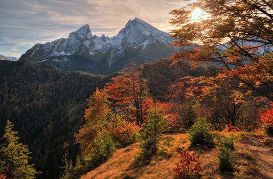 Фото бесплатно осень, лесной массив, горная местность