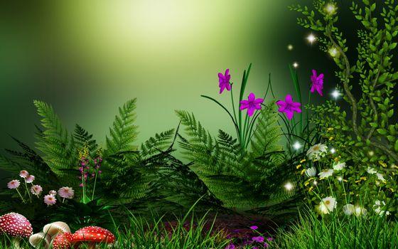 Заставки цветы, травы, грибы