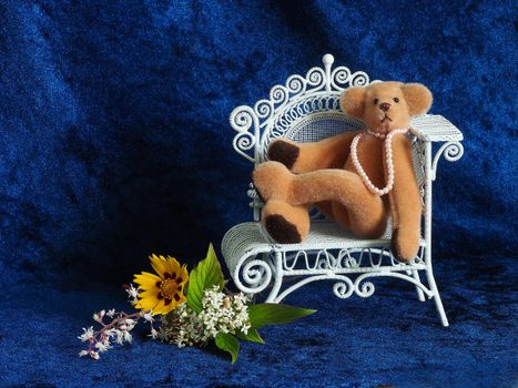 Photo free blue velvet, armchair, teddy bear