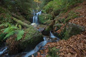 Фото бесплатно Каскад Шарлемань, Вогезы, Франция