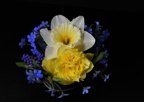 Photo free spring flowers, romance, background image