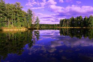 Фото бесплатно отражение, облака, деревья