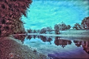 Бесплатные фото park,sky,trees,grass,wood,snow,lake