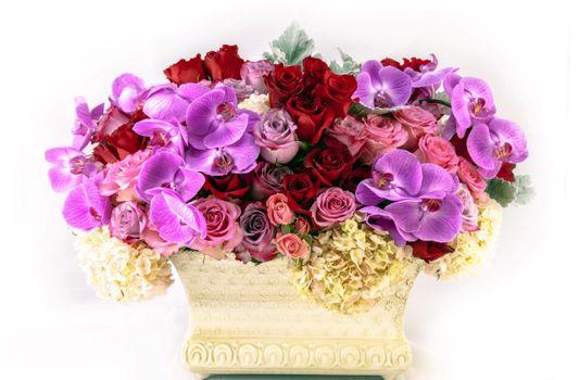 Фото бесплатно цветы, много, ваза
