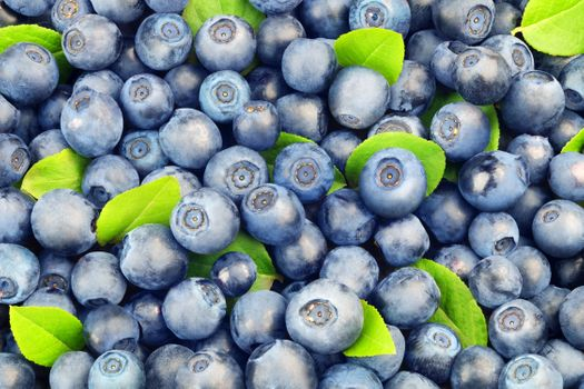 Well, a lot of blueberries