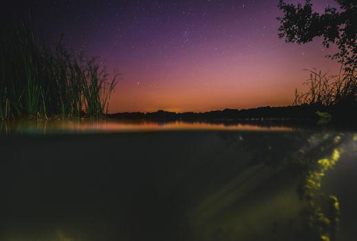Бесплатные фото звезды,ночь,ночное небо,фон,обои,облака,дрон,беспилотник вид,лес,природа,hydrophyte,подводный