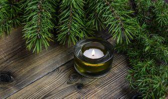 Фото бесплатно ель, свеча, Рождество