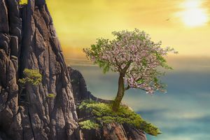 Фото бесплатно гора, дерево, пейзаж, природа, небо, солнце, alpine, приключение, art