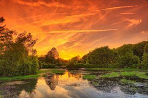 Фото бесплатно закат, пруд, парк