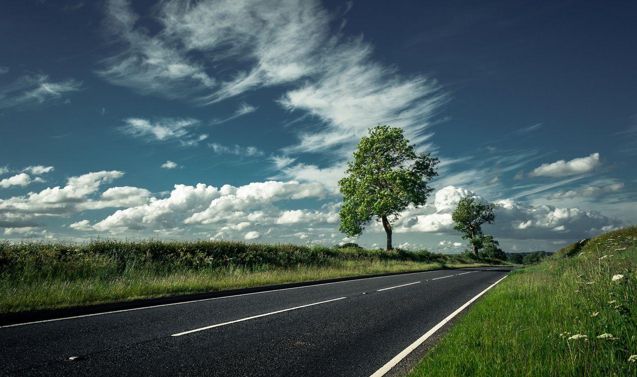 Фото бесплатно дорога, небо, облака, дерево, поле, трава, природа, пейзаж, пейзажи