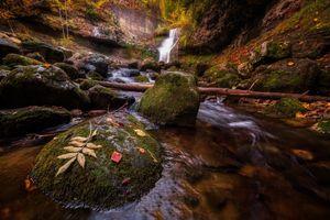 Осенний водопад и замшелые камни · бесплатное фото