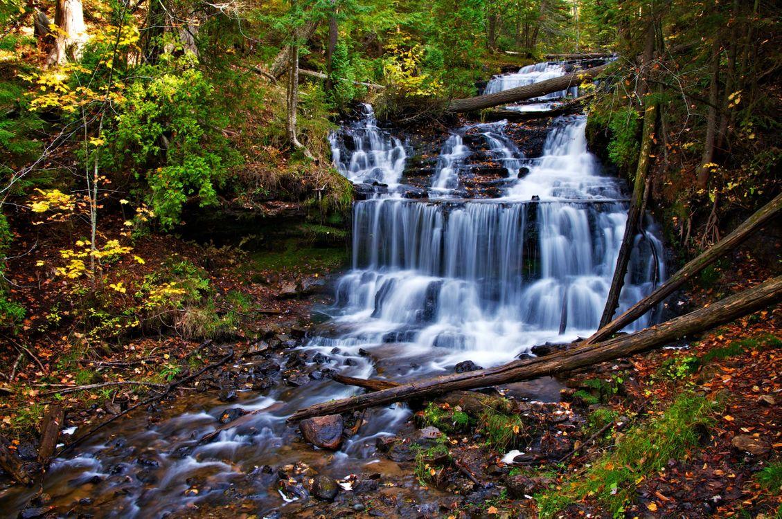 Фото бесплатно водопад, поваленные деревья, осенний день - на рабочий стол