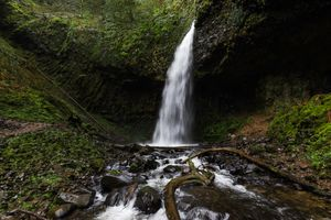 Бесплатные фото лес,на улице,водопад,скала,камень,дерево,река