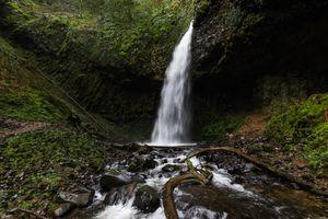 Фото бесплатно лес, на улице, водопад