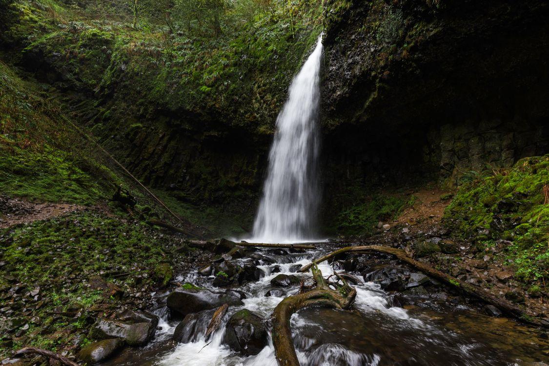 Фото бесплатно лес, на улице, водопад - на рабочий стол