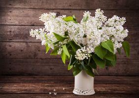 Бесплатные фото сирень,букет,ваза,цветы,деревянный фон,натюрморт,флора