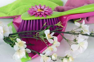 Фото бесплатно веник, цветы, букет цветов
