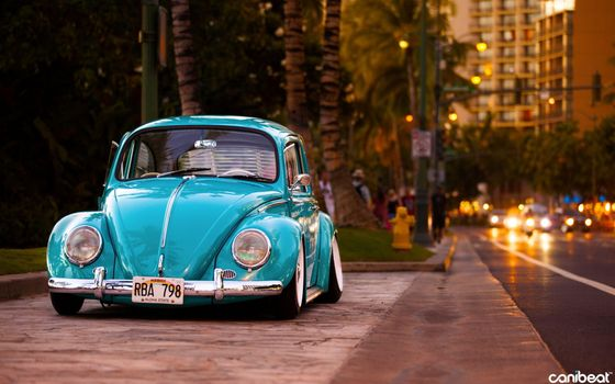 Old beetle car