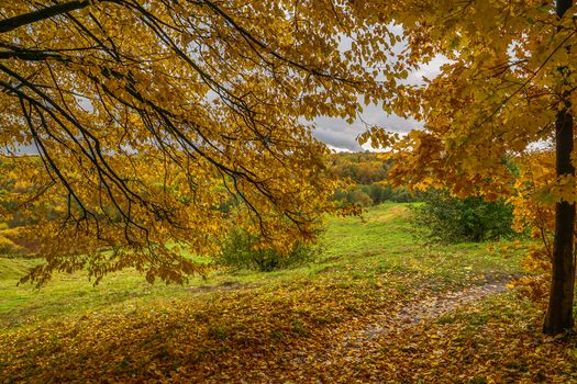 Photo free October in summer, manor, nature