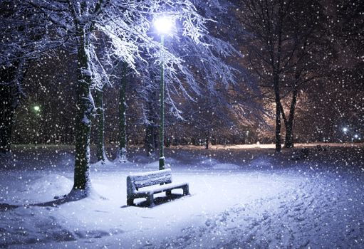 Фото бесплатно красота, природа, снег
