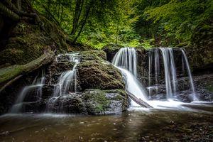 Фото бесплатно лес, деревья, водопад