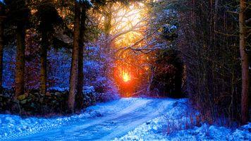 Заставки закат,зима,снег,лес,деревья,дорога,природа