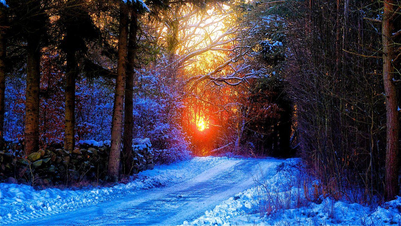 Обои закат, зима, снег, лес, деревья, дорога, природа, лучи солнца, пейзаж на телефон | картинки пейзажи
