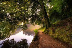 Бесплатные фото канал,лес,тропинка,солнечные лучи,деревья,пейзаж