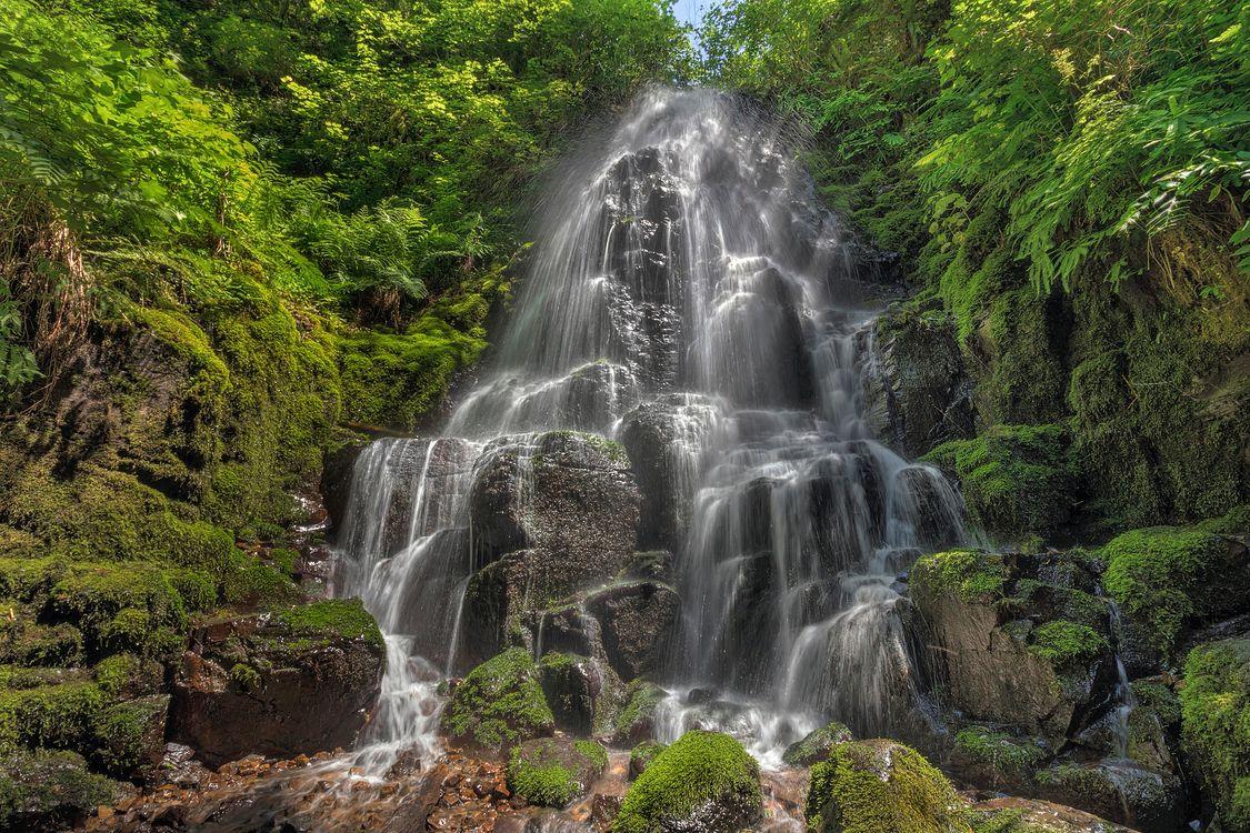 Фото бесплатно Fairy Falls, Wahkeena Canyon, Columbia River Gorge, водопад, поток, течение, пейзаж, пейзажи - скачать на рабочий стол