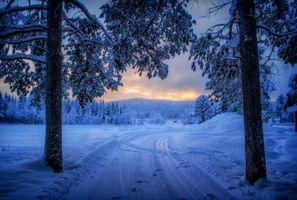 Заставки закат,зима,снег,лес,дорога,деревья,пейзаж