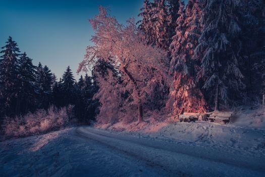 Бесплатные фото зима,Германия,Оденвальд,закат,дорога,снег,лес,деревья,лавочка,пейзаж