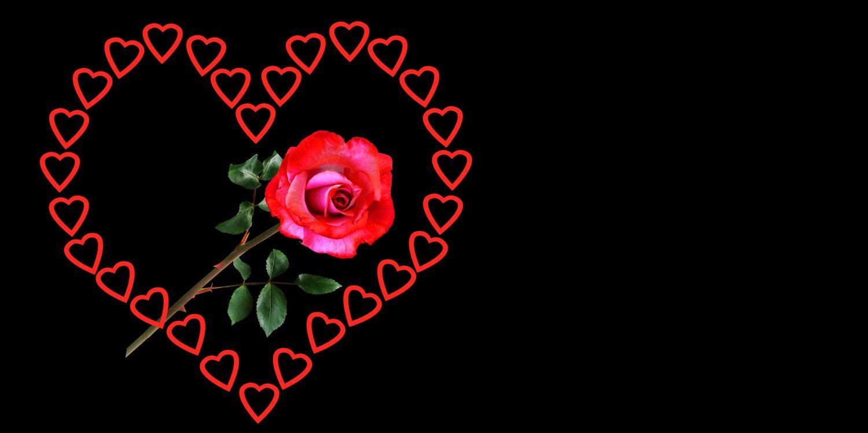 Фото бесплатно эмоции, любовь, сердце, день святого валентина, роза, символ, чувства, удача, счастливый, баннер заголовка, поздравительная открытка, чёрный фон, сердечко, праздники