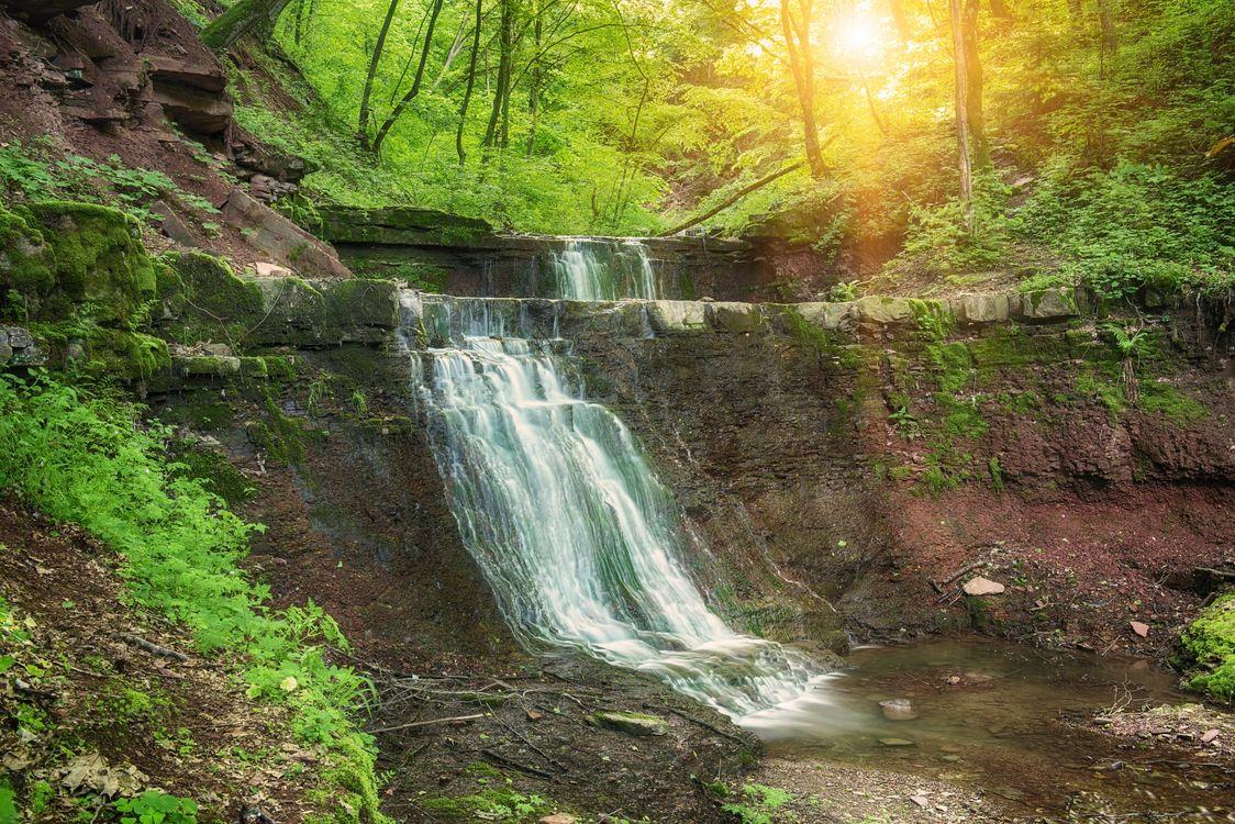 Фото бесплатно лес, водопад, деревья - на рабочий стол