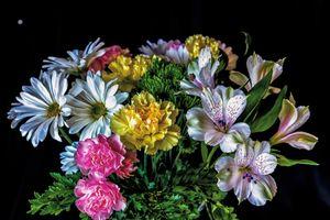 Большой букет цветов · бесплатное фото
