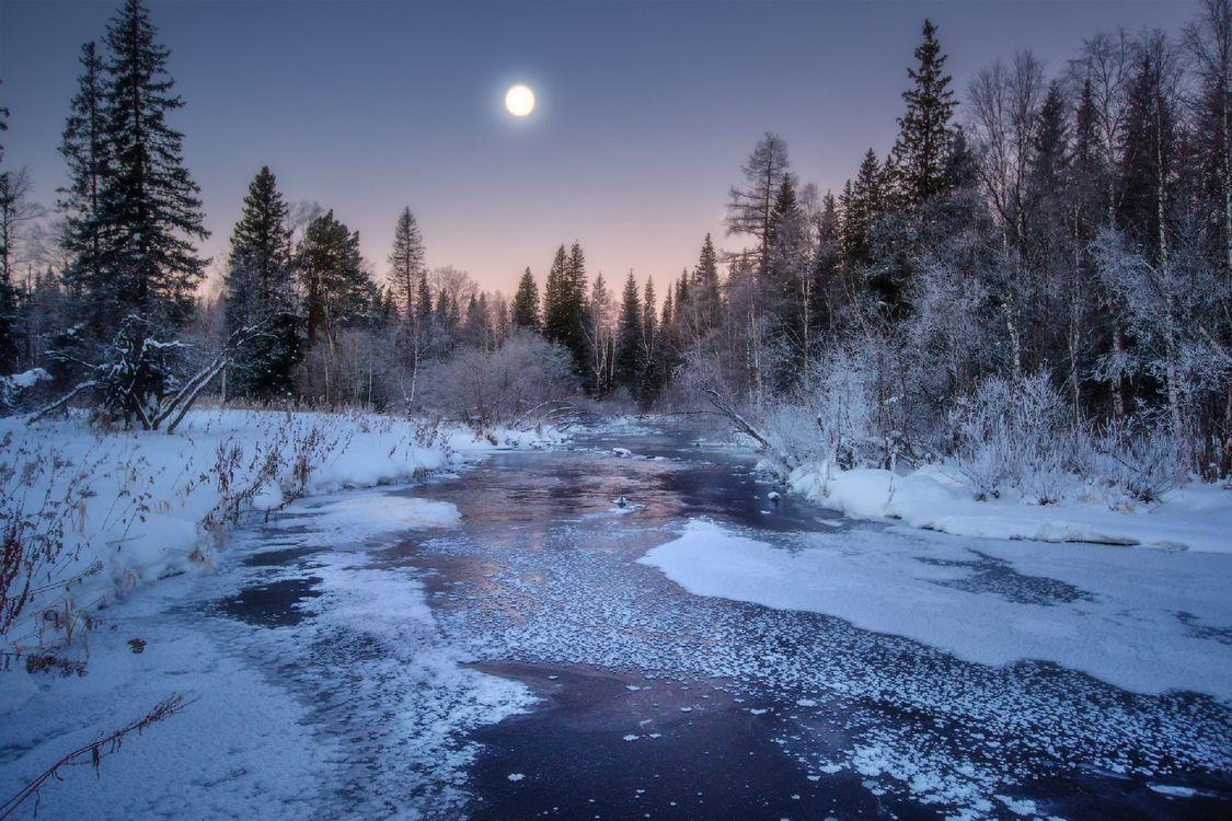Фото бесплатно закат, зима, река, луна, снег, лес, деревья, пейзаж, пейзажи