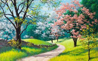 Фото бесплатно цветы, забор, трава
