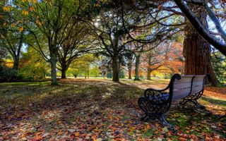 Photo free Park bench, bench, trees