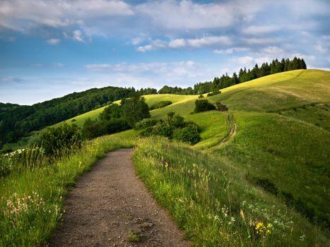 Заставки холмы, пейзаж, дорога, деревья