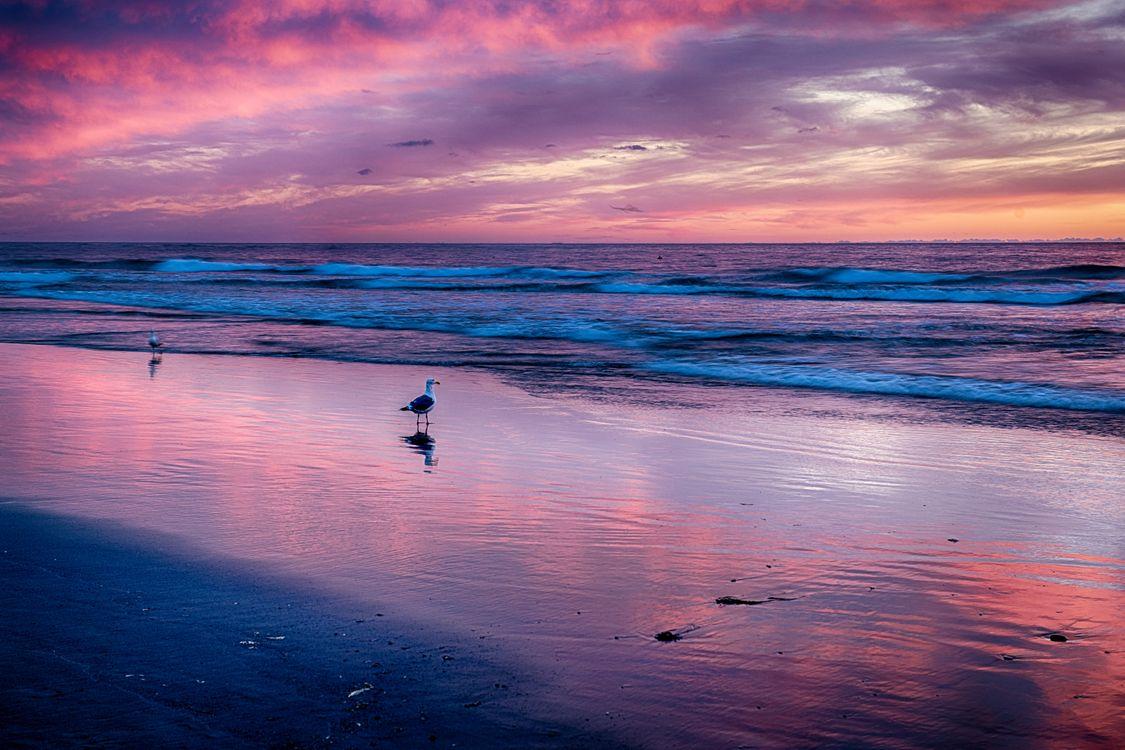 Обои Sunset at Cannon Beach, море, облака картинки на телефон