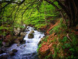 Фото бесплатно течение, пейзаж, водопад