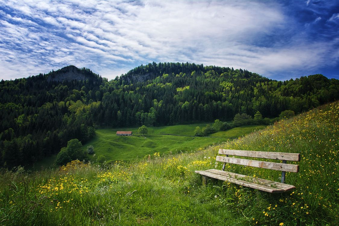 Фото бесплатно Belchenflue, Schweizer Belchen, Швейцария - на рабочий стол