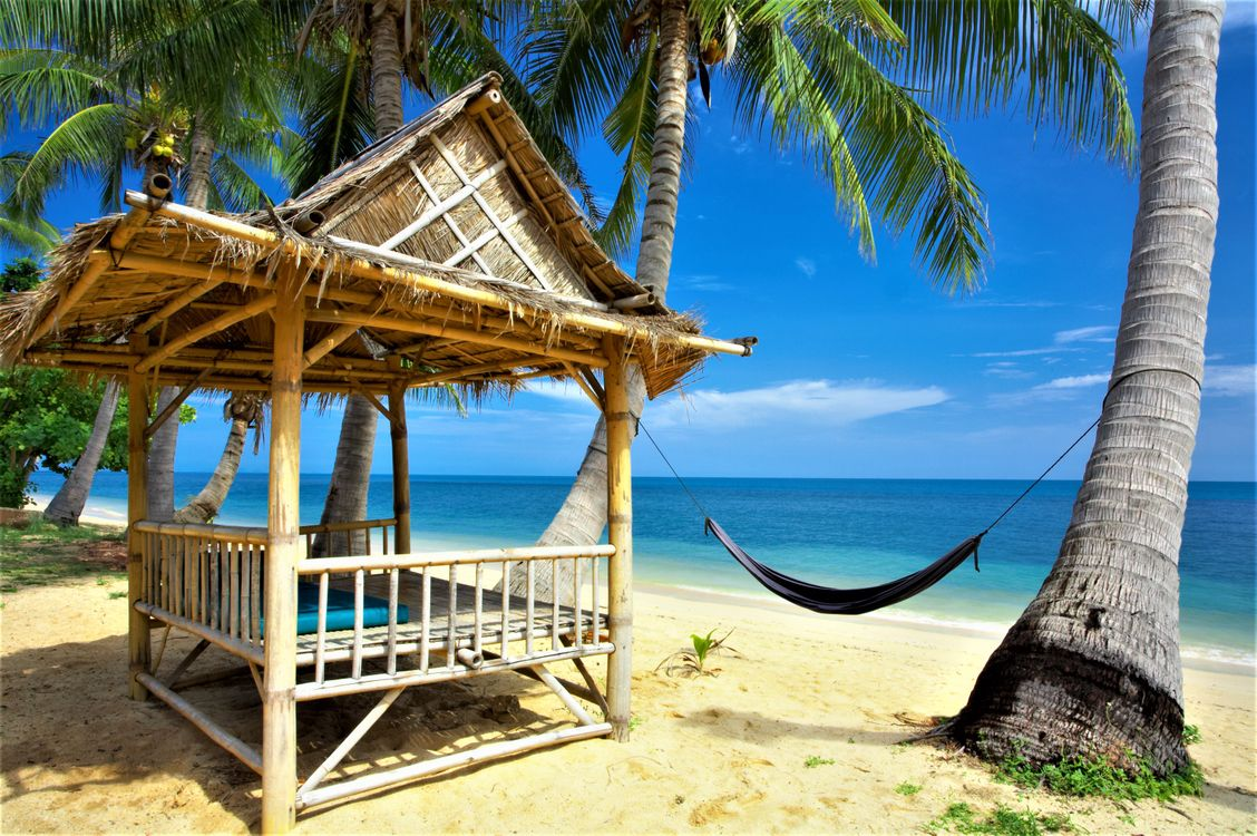 Фото бесплатно Tropical, paradise, beach, природа