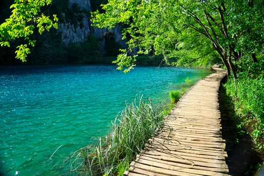 Wallpaper on the table of the national park plitvice lakes, plitvice lakes national park