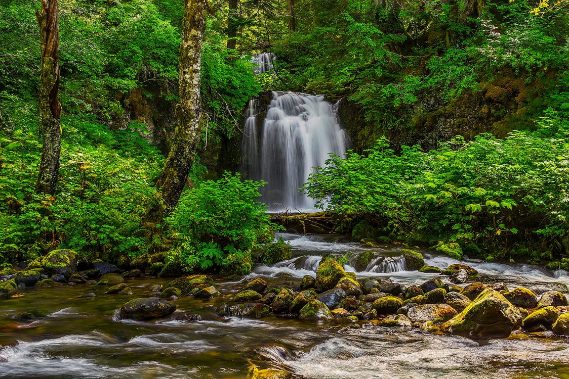 Фото бесплатно Twin Falls, Taken in the Gifford Pinchot National Forest, washington - на рабочий стол