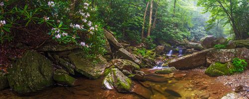 Фото бесплатно Boone Fork Creek Panorama, North Carolina, лес