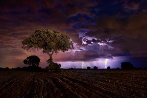 Фото бесплатно поле, молния, ночь